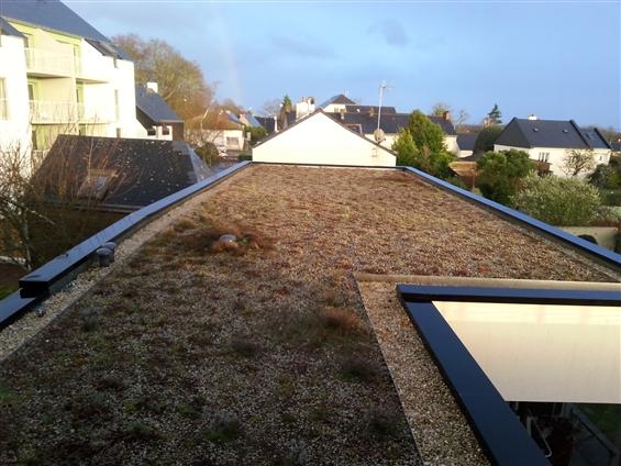 Terrasse végétalisée LA CHAPPELLE SUR ERDRE 44240