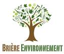 Brière Environnement abattage arbre