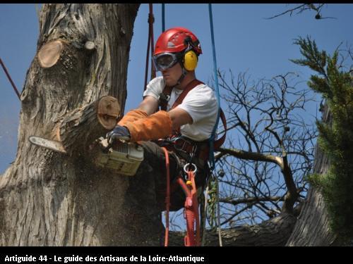 Employé de l'entreprise Brière Environnement basé à LA CHAPELLE DES MARAIS